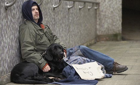 Homeless man with dog and sign