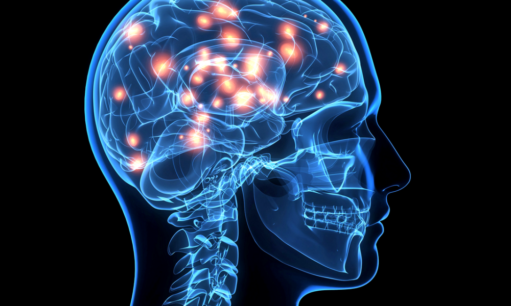 Brain Can Recover Short Term Memory Thetechnews