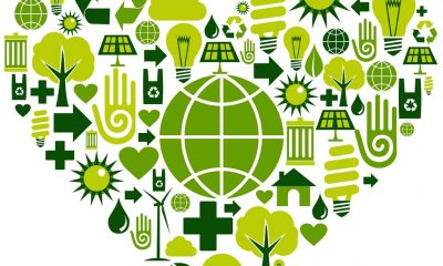 the-economics-of-going-green